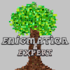Enigmatica 2 : Expert | Skyblock 1.25